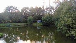 L 'étang avec au fond Le Petit Manoir