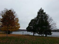 Pinckney Recreation Area - Bruin Lake