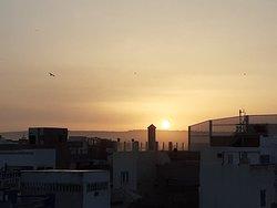 Riad Watier