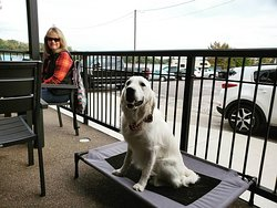 We're a fan of the furry four-legged friends. Our patio is doggie friendly!  (pet bed not provided, it was brought in by the dog-owner pictured for this cutie pie)