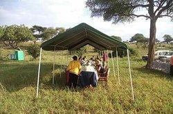 Enjoy your Best Bush Lunch with Timber Wolf Adventures while you are watching wild animals.  Booking info@timberwolfadventure.com www.timberwolfadventure.com WhatsApp:- +255 787 104 848  #safarilife #africasafari #photosafari #safariparty #familysafari #luxurysafari #tanzaniasafari #wildlifesafari #safari #safarilive #safariphotography #tanzaniatourism #tanzaniatravel #tanzaniaunforgettable #Tanzaniaholidays #Tanzania2020 #TanzaniaTours #Tanzaniawildlife #africana #exploreafrica