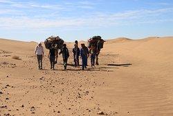 Sahara Espace