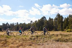 Bike Trails for all abilities