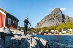Fishing experience in Lofoten.