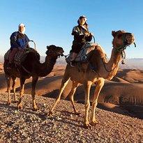 Sahara Revelation