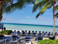 Beach chairs on the ocean