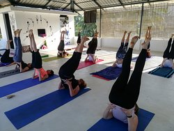 Elephant Yoga Centre