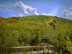 Las cabezas de San Juan, nature reserve, Fajardo P. R