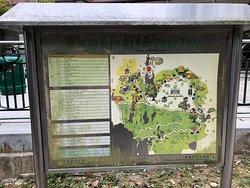 Lung Fu Shan Morning Trail