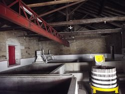 This is the space where our Fragulho wine is produced..   https://www.fragulho.pt/casa-dos-lagares---public-exhibition
