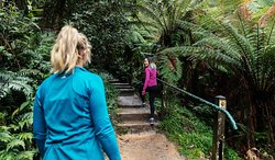 Kokoda Trail Memorial Walk