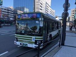 普通のバスは緑、空港バスは紫