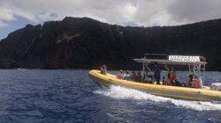 终极观鲸之旅