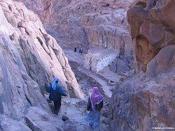 Discesa dal Monte Sinai - Il Monte Sinai con i suoi 2.285 metri di altezza è la seconda montagna più alta dell'Egitto. Ci sono due percorsi per raggiungere la cima del monte. Il primo, è più lungo e meno ripido. La salita è possibile a piedi o in cammello con la guida di beduini locali. Il tempo approssimativo a piedi è di circa due ore e mezzo. Il secondo percorso, è più diretto e ripido e parte direttamente dietro il monastero, misura circa 3.750 passi detti passi della penitenza.