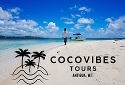 CocoVibes Tours
