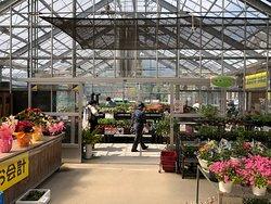 野菜、花の苗などが買える温室スペースが広めです