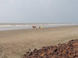 Beautiful lonely Beach of Mandarmani, WB