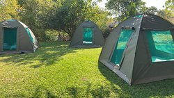 Tents provided by the lodge and bedding