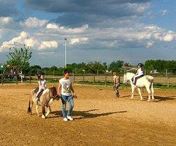 Βόλτες με άλογα και πόνυ