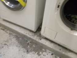 Laundry, not disinfected or cleaned for ages