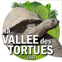 La Vallee des Tortues