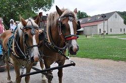 Wagon ride at Landis Valley Museum