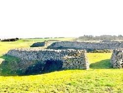Quelques milliers d'années avant Jésus Christ, un chantier colossal a vu le jour à cet endroit. Découvert grâce à des photos aériennes en 1971, c'est 10 ans de fouilles (1975-1985) qui mettront à jours les restes de ces fossés dont la longueur totale est approximativement de 1,5 km. La signalétique présente permet de se représenter le site et ses système de défenses.