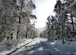 Powder Temple snowy Street!