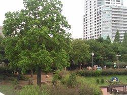 Taman Kaijo Higashi Shinagawa