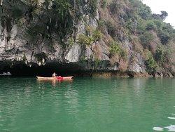 Blue Swimmer Kayak Rentals