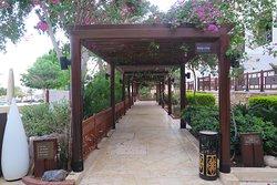 ตลอดแนวทางเดิน ภายใน บริเวณ โดยรอบ ของโรงแรม จะ ร่มรื่นไปด้วย ต้นไม้ และ ดอกไม้ นานาพันธุ์ ครับ