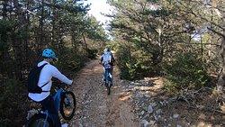 Journey through the Vidova gora