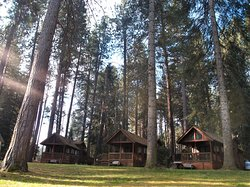 Tucked beneath the towering Ponderosa and Tamarack trees and only steps from the spring-fed Metolius River, the cabins and RV park at Cold Springs Resort offer the perfect retreat.   Hiking, biking and world-class fly-fishing opportunities abound and all are within walking distance here in the picturesque hamlet of Camp Sherman, Oregon.