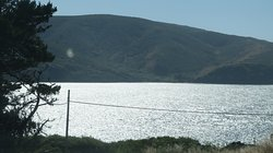 Tomales Bay State Park,