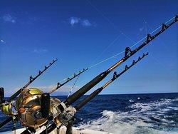 Happy Hooker Tenerife Fishing