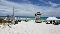 Some views of Seltzer in PCB