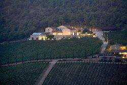 Brancai winery at night