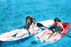 SUP立式划槳-暑假限定(預約制) 需現場加購報名參加