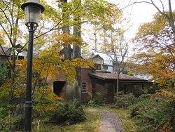 秋の敷地内の紅葉