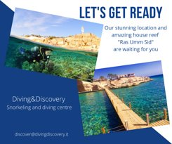 Diving & Discovery