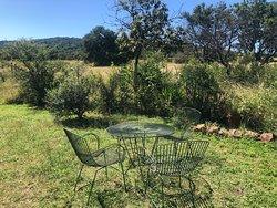 Puschka Writers Cottage -garden view