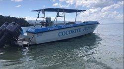 CoCokite-Fishing