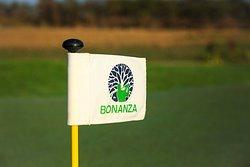 World class golfing facilities