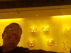 """With some golden objects likely those of """"ancient elites"""" seen behind me (on the 2nd floor)"""
