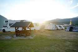Reed Camping