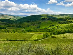 Wine country and the hills of Tuscany. Reading to go yet?