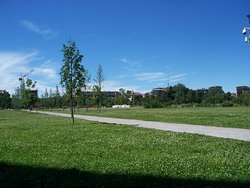 Parco Segantini