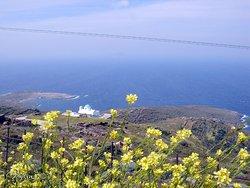 au printemps une vue de loin de plati gialos