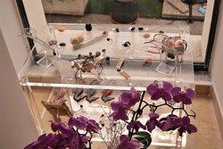 eco gioielli realizzati in pasta di mitili del mediterraneo