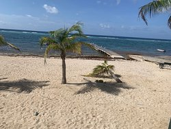 A 'MUST DO' IF YOU ARE IN CAYMAN!